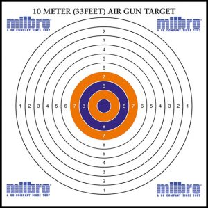 17cm 10m paper target